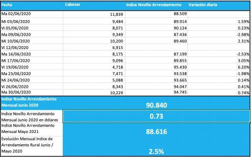 indice novillo arrendamiento junio 2020 mensual arrendamiento rural