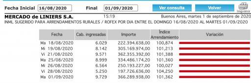 indice novillo arrendamiento 1 septiembre 2020